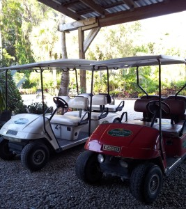golf-cart-ready