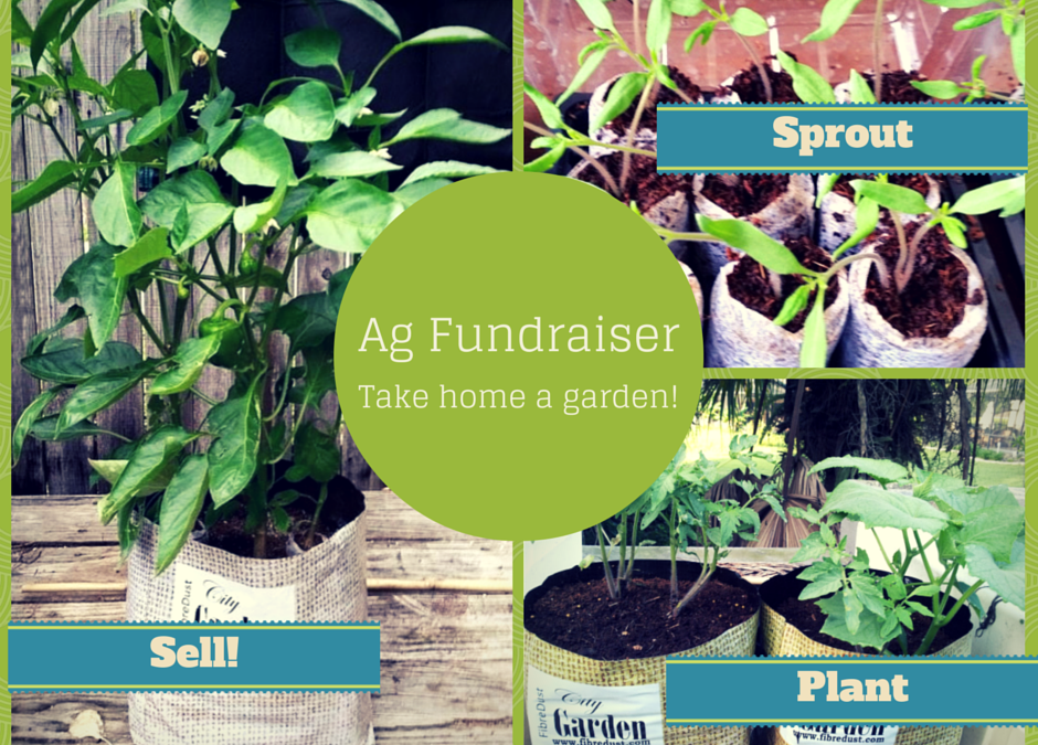 Funds for 4-H FFA and High School Ag Classes