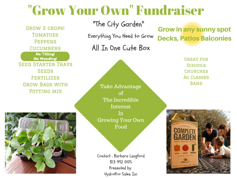 Fundraiser: Grow Your Own – Complete Garden Boxes